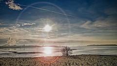 Glücks-Stadt (ruedigerhey) Tags: elbe ebbe wasser flut meer fähre sonne himmel lenzflair baum horizont glückstadt wischhafen deutschland germany