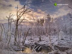 Snowy Morning (john bulmer) Tags: snow morning saratoga newyork johnbulmerphotography