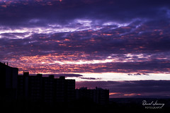 _MG_5861 - ed t (Daniel Jiménez Fotógrafo) Tags: landscape paisaje atardecer getdark sun sunset lateafternoon building edificio cloud nube sky cielo colors purple yellow red pink dark darkness madrid spain españa danifotografia danieljimenezfotowixcomportfolio danieljg