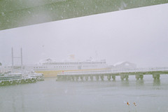 A sudden snow storm (しまむー) Tags: minolta himatic rokkor 45mm f2 fuji superia venus 400