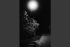 Fejø (tiltdesign2016) Tags: zuiko50mm olympusom2n analogphotography adonalrodinal125 push fejø fejo dänemark denmark plustekopticfilm7600ise bw 4001600asa kodaktmax400 herredsvej nacht night strase street