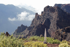 High in the mountains of La Palma (EduardMarmet) Tags: lapalma spanien esp