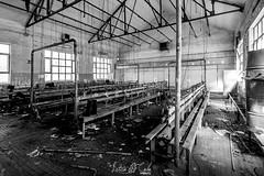 Desolación negra XI (Leticia Cabo) Tags: pais lliones laciana valle mineria mina minero cuenca minera miner mines working north spain abandono campo concentracion wars mundial