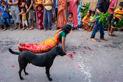 Dondi (SaumalyaGhosh.com) Tags: dondi dog kolkata india color light people ritual water curve