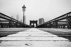 Brooklyn Bridge Snow Fall (broadswordcallingdannyboy) Tags: ny usa us america newyork copyright leon reilly eos7d eflens cityscape canon winter creative lightroom metropolis iconic 2019 newyorkcity reflection lights citylights newyorkstateofmind newyorkminute donotcopy leonreilly eastcoast nyc city copyrightleonreillyphotography newyorkwinter february2019 brooklyn bridge brooklynbridge bw blackwhite mononyc mono leonreillyphotography snow snowfall snowflurry flurry