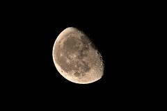 Lune gibbeuse (Landedge Pictures) Tags: nature astronomie astro astrophoto astrophotographie astrophotography deepsky sky ciel étoiles stars lune moon outside canon longexposure wideangle wide wild natur