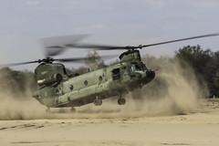 GLV-5 2019 : Royal Netherlands air force CH-47D D-103 - in Explore - (Hermen Goud Photography) Tags: airfields chinook d103ch47d298sq glv5 helicopter helikopter klu koninklijkeluchtmacht militair nederland netherlands royalnetherlandsairforce vliegvelden aircraft aviation thenetherlands