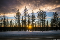 Z19_1275 LT (Zoran Babich) Tags: lapland lappi finland suomi winter sunset road ice clouds trees landscape rovaniemi fi