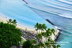 OAHU-HAWAII_1D52748-01 (Donna Molinari Photography) Tags: sanjose ca usa