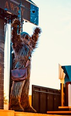 """The Wookie"" (TimeKeeper57) Tags: 2018 nikon wdw disneyparks florida orlando outdoors chewbacca wookie agalaxyfarfaraway starwars hollywoodstudios waltdisneyworld"