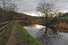 Huddersfield Narrow Canal (Halliwell_Michael ## Offline mostlyl ##) Tags: huddersfield huddersfieldnarrowcanal westyorkshire nikond40x 2018 towpath trees reflections reflection landscape perspective water greyskies reflectionslovers