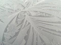 Frost pattern (daveandlyn1) Tags: pattern frosty carbonnethood morning pralx1 p8lite2017 huawei smartphone psdigitalcamera cameraphone skodasuperb