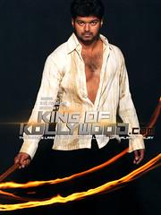 King of Kollywood (King of Kollywood) Tags: actor vijay thalapathy sarkar mersal theri hd uhd stills posters movie gajan