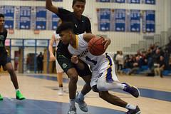 142A3934 (Roy8236) Tags: lake braddock basketball south county high school championship