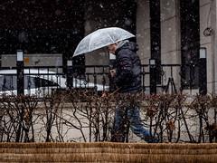 SillimSnow-3-20190219 (Daniel Smukalla) Tags: asia korea sillim snow southkorea street winter 대한민국 한국