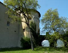 Scena - 2 (antonella galardi) Tags: altoadige sudtirol 2011 bolzano merano scena schenna castle schloss castello