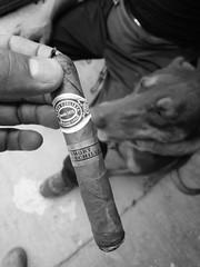 """Romeo y Julieta"", from Cuba. (yaotl_altan) Tags: puro cigar cigare zigarre сигара sigaro charuto romeoyjulietacigars"