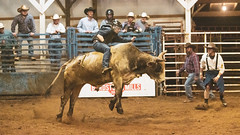 Like a hurricane that's dancing with a kite (sniggie) Tags: kentucky manton marioncounty xbarena bullriding rodeo