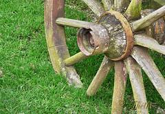 050705 Prca 190411 © Théthi (thethi: pls read my first comment, tks) Tags: paradisio1 ferme fermette roue char ancien parc chemin decouverte juillet brugelette hainaut wallonie belgique belgium faves41