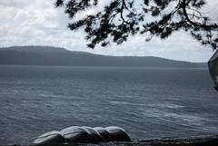DSC_0613 (MSchmitze87) Tags: schweden sweden dalsland kanu canoeing see lake