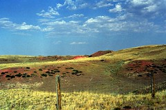 Red Hills of Wyoming with Fence (pmvarsa) Tags: summer 2001 analog film 135 kodak kodakroyalgold 200iso nikonsupercoolscan9000ed nikon coolscan west western outdoor activity tourism tourist clouds landscape fence red soil big sky grass canon ftb canonftb classic camera wyoming wy usa america unitedstates