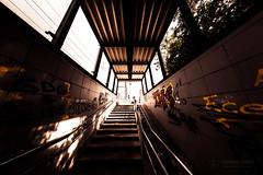 Lines Up (Thomas TRENZ) Tags: aufgang aufwärts austria graffitis sonne stiegen vienna fisheye hinauf licht light lines linien stairs sun unterground up urban wien österreich simmering