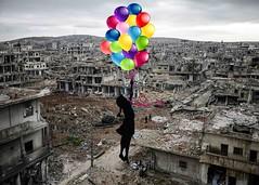 537307592 (baselward2018) Tags: merlinid91730264 wire getty international kobane syria bird peace 50x70cm