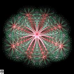 060_00-Apo7x-190213-1 (nurax) Tags: fantasia frattali fractals fantasy photoshop mandala maschera mask masque maschere masks masques simmetria simmetrico symétrie symétrique symmetrical symmetry spirale spiral speculare apophysis7x apophysis209 sfondonero blackbackground fondnoir