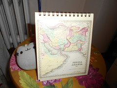 around the world with pusheen (en-ri) Tags: calendario nikon calendar january gennaio pusheenthecat mappa cartina geografica gatta miao pupazzino