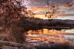 Rose Morning (PhotograTherapy (James Edmondson)) Tags: d850 nikon sunrise boise idaho