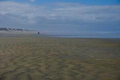 20190128 018 90 Mile Beach at Whalers Road (scott_in_YYZ) Tags: 2019 90milebeach january newzealand northisland northland summer tasmansea travel