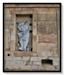 Miaou (manolomun) Tags: architecture arles romain rhone provence france ole fresque