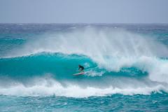 Waves are Free (diego.rzg) Tags: surf surfinglifestyle surflife surfers surfline surfboard surfphoto surferparadise surfingtime surfing surfer surferworld surfar surfista surfingphotograph surfcoast surfshots surfingusa hawaii hawaiiloversphotos northshore oahu waikiki honolulu quiksilver ripcurl beachlife picoftheday bestoftheday diegogomez
