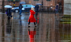 Lady In Red (Fermat 48) Tags: stpeterssquare manchester rain centrallibrary lady red umbrella canon eos 7dmarlii ef24105mmf4lisusm reflection