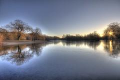 Sun across the water (ArtGordon1) Tags: eppingforest london england uk leytonstone winter frozen reflections reflection hollowpond hollowponds davegordon davidgordon daveartgordon davidagordon daveagordon artgordon1 february 2019