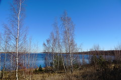 DSC04748 (bluesevenxp) Tags: geiseltalsee mücheln marina lake see ufer floating