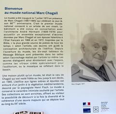 20171011 PACA Alpes-Maritimes Nice - Musée Chagall (3) (anhndee) Tags: paca alpesmaritimes nice musée museum museo musee painting painter peinture peintre