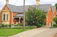 Tumut.  Worte Cottage. Built around 1890 with red brick walls and yellow brick quoins, a bay window and very decorative barge boards on the gables. Very pretty. (denisbin) Tags: tumut church allstains anglican tower spire cottage wortecottage brickwork baywindow bargeboards crepemyrtle