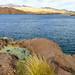 USA - Arizona -Bullhead City - Davis Dam