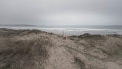 www.vagalumes.es (Jano Sanmartín) Tags: 2019 alanzada arousa atlantico invierno lanzada playa riadearousa riasbaixas terron vagalumes vilanova wwwvagalumeses