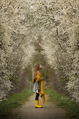 Spring (agirygula) Tags: spring frühling nature girl yellow green tree flowers standing child childhood magical magic wonder