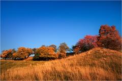 Das Chlorophylle feiert Fasching (linke64) Tags: thüringen deutschland germany natur landschaft laub blätter bäume baum berge himmel herbst hügel gras wiese rahmen bunte bunt jahreszeiten