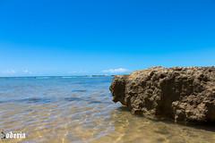 SONETO LXV (Bodeccn) Tags: canon t6i nature landscape bahia portoseguro beach praia
