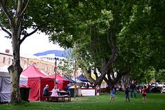 DSC_3693 (jenhom) Tags: 20190209 z6 tasmania tassie australia woodenboatfestival hobart