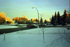 32, 48, and 50 (pmvarsa) Tags: fall 2001 autumn analog film 135 agfa hdc 100iso agfahdc100 nikonsupercoolscan9000ed nikon coolscan confusion street cold snow winter cars truck sun set sunset wires trees lamp corner story narrative suburb sidewalk canon ftb canonftb classic camera stop sign calgary alberta canada ab