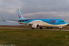 TUIfly D-ABKA (U. Heinze) Tags: aircraft airlines airways airplane planespotting plane haj hannoverlangenhagenairporthaj flugzeug eddv nikon