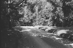 Illoura Road (photo 7) (Matthew Paul Argall) Tags: beirettevsn 35mmfilm kentmere100 100isofilm blackandwhite blackandwhitefilm road street illouraroad