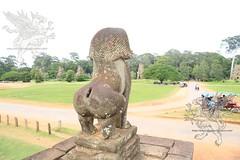 Angkor_terrazza degli elefanti_2014_04