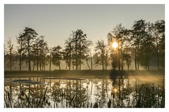 Twilight-atmosphere (Mariannevanderwesten) Tags: reflection reflectie twilight schemering water trees bomen sun zon zonnestralen nikon nature natuur light licht