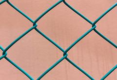grid (Rosmarie Voegtli) Tags: fence dornach